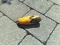 Klicke auf die Grafik für eine größere Ansicht  Name:mango-vergammelt1.jpg Hits:35 Größe:209,4 KB ID:121